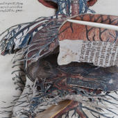 Vesalius changes how we see ourselves