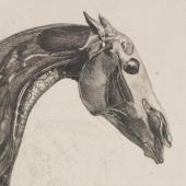 Stubbs's horse