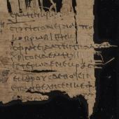 New materials: papyrus