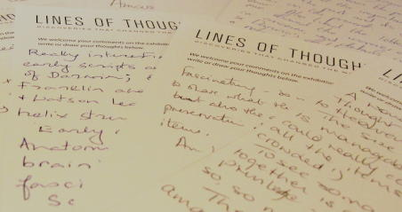 Lines of Thought visitor comments