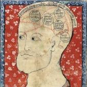 A compendium of knowledge (8)