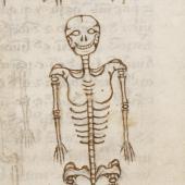 Mondeville's bone man