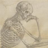 Geminus's skeleton