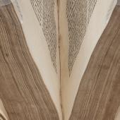 Alain de la Roche (1428–75) <em>Psalterium Virginis Mariae</em>