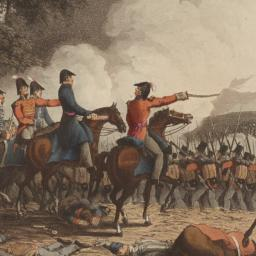 A damned serious business: Waterloo 1815, the battle and its books